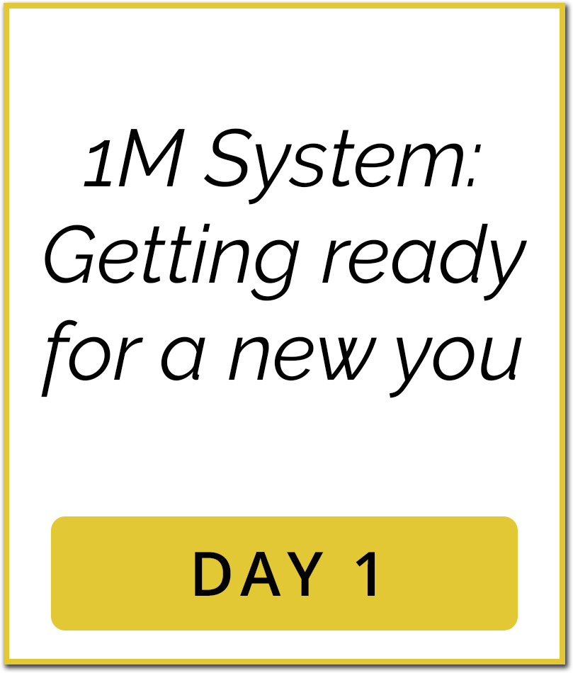 1M Sales System Content Day1